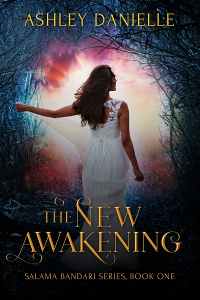 The New Awakening Salama Bandari Series Book One