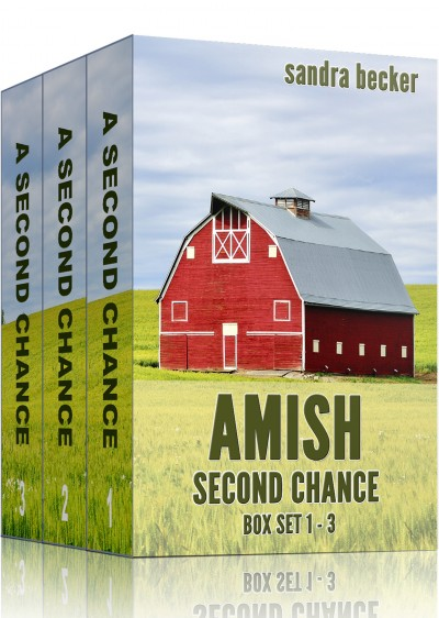 Amish Second Chance Boxset