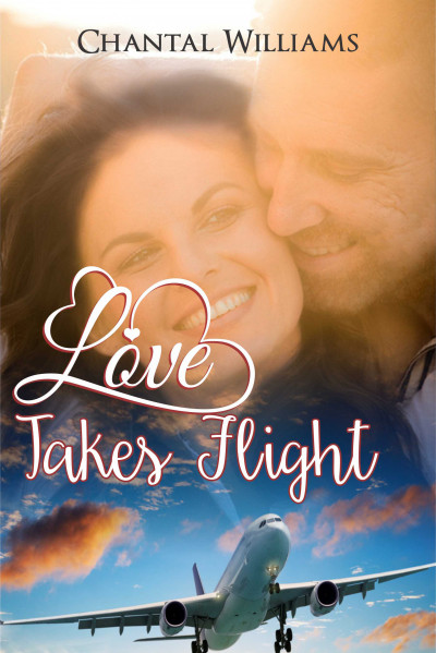 Love Takes Flight: A Billionaire Love Story