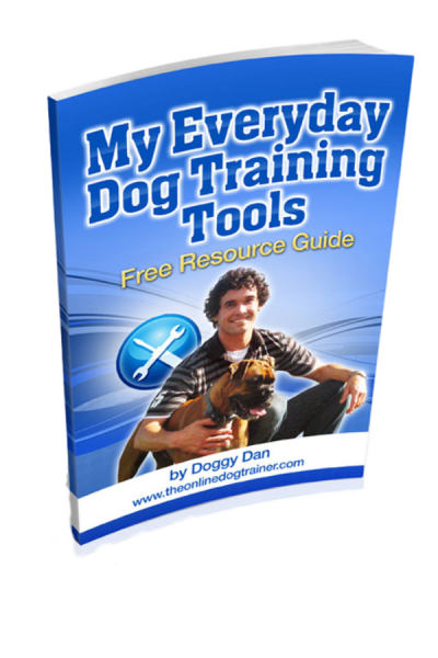 My Everyday Dog Training Tools