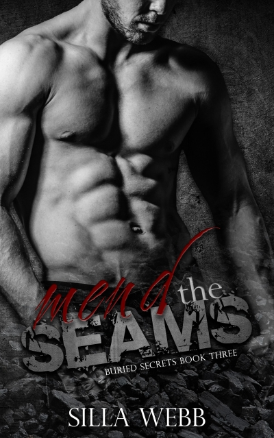 Mend the Seams (Buried Secrets #3)