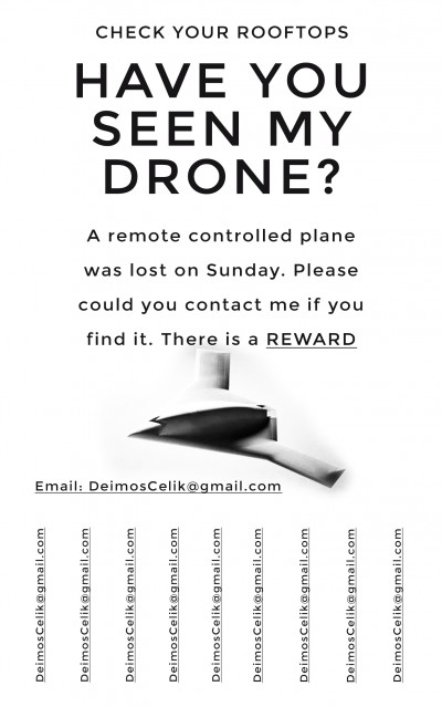 SAMPLE - Have You Seen My Drone?
