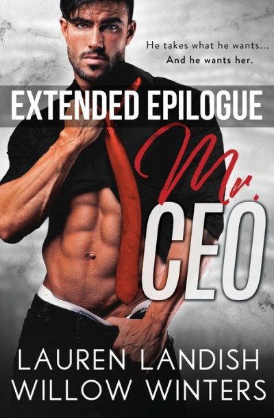Mr. CEO: Extended Epilogue