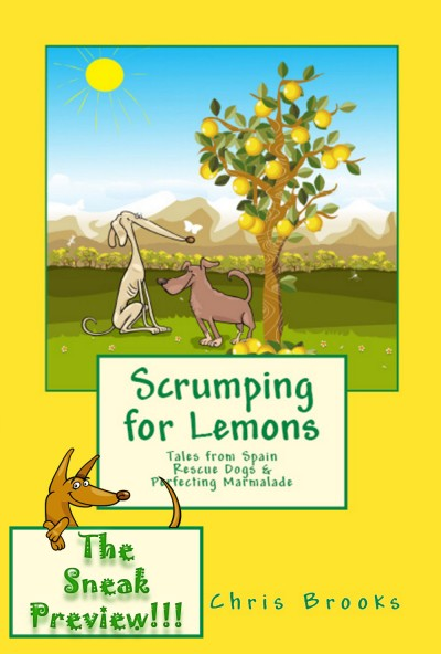 Scrumping for Lemons - The Sneak Preview