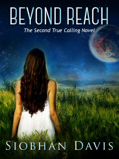 Beyond Reach (True Calling #2) Sample