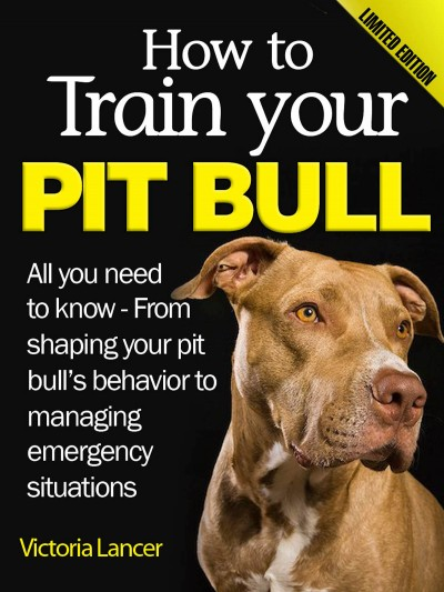 How to Train Your Pit Bull